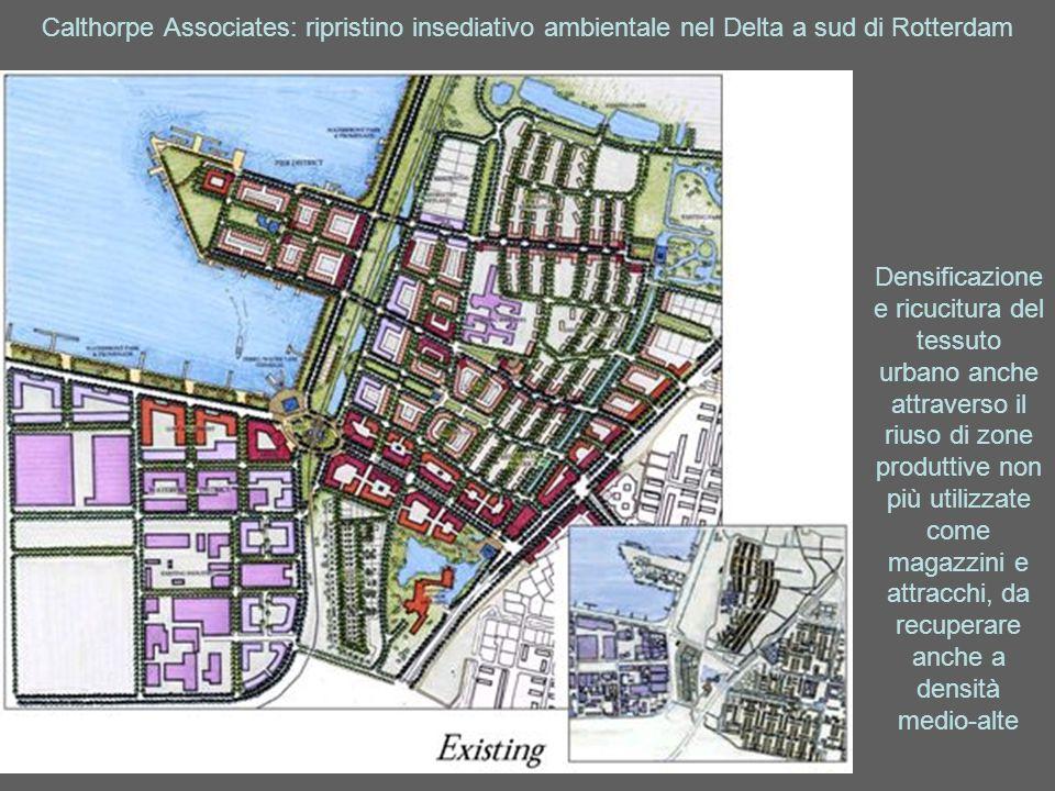 Calthorpe Associates: ripristino insediativo ambientale nel Delta a sud di Rotterdam Densificazione e ricucitura del tessuto urbano anche attraverso i