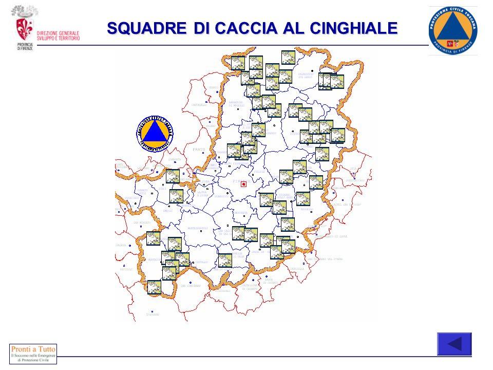 Immediatamente attivabili COMPOSIZIONE SQUADRE DI CACCIA AL CINGHIALE