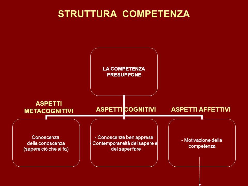 STRUTTURA COMPETENZA ASPETTI METACOGNITIVI ASPETTI COGNITIVIASPETTI AFFETTIVI