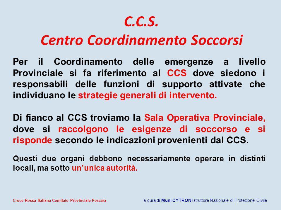 C.C.S. Centro Coordinamento Soccorsi Per il Coordinamento delle emergenze a livello Provinciale si fa riferimento al CCS dove siedono i responsabili d