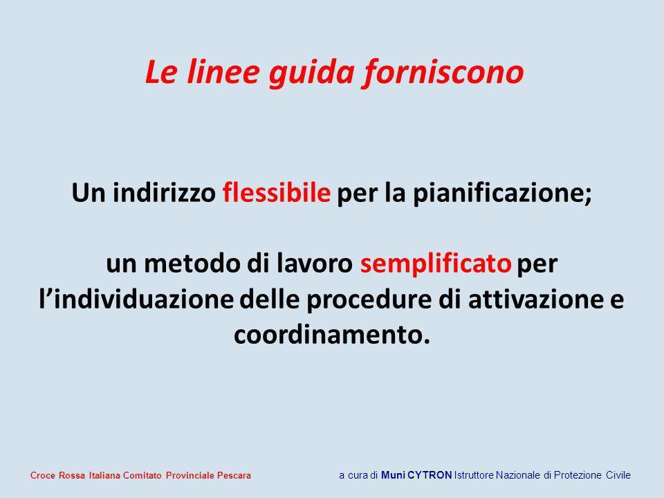 Le linee guida forniscono Un indirizzo flessibile per la pianificazione; un metodo di lavoro semplificato per lindividuazione delle procedure di attivazione e coordinamento.
