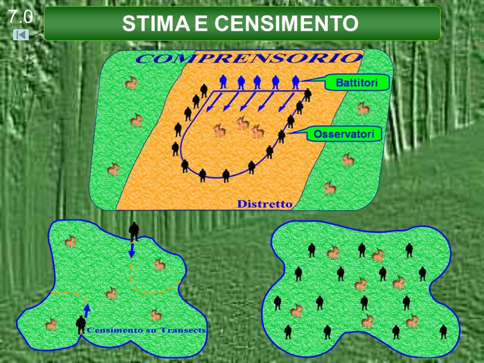 Il numero di individui presenti nellunità di superficie si determina con le stime ed i censimenti.