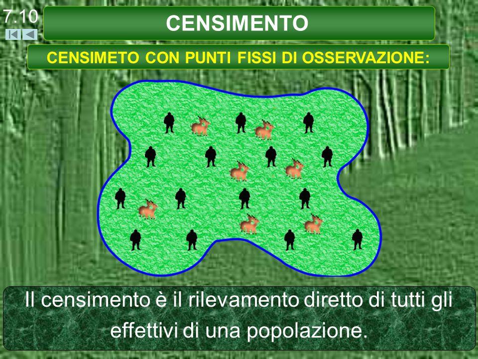 Il censimento è il rilevamento diretto di tutti gli effettivi di una popolazione. CENSIMETO CON PUNTI FISSI DI OSSERVAZIONE: CENSIMENTO 7.10