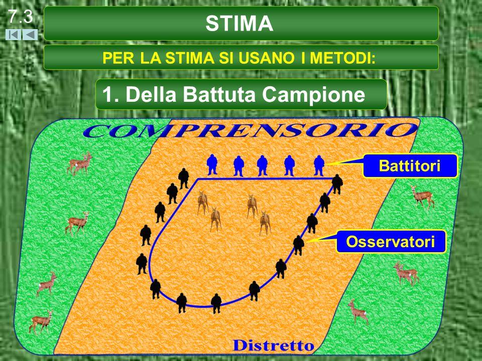 STIMA 7.3 PER LA STIMA SI USANO I METODI: 1. Della Battuta Campione Battitori Osservatori