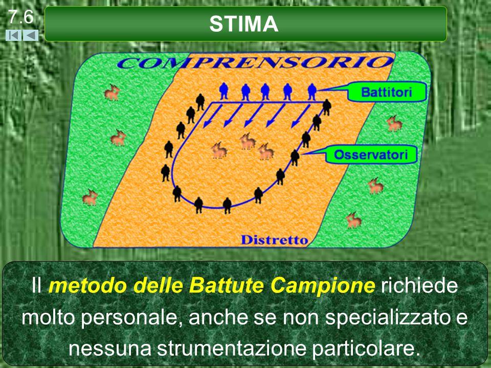 Le Battute Campione si effettuano in condizioni di scarsa visibilità (aree boscate). STIMA 7.7