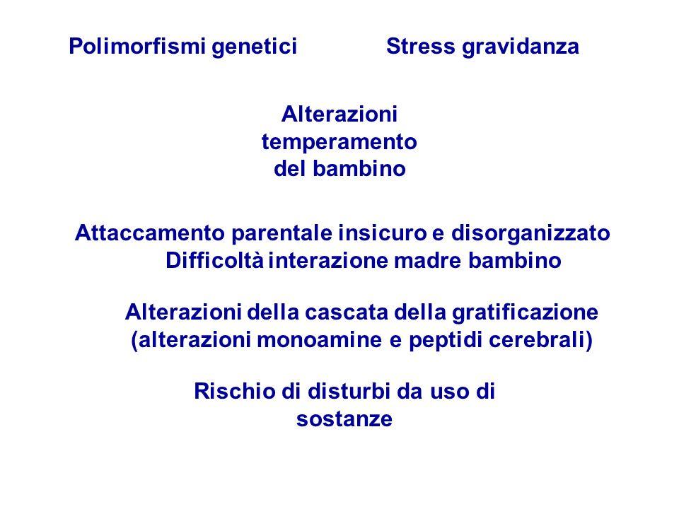 Polimorfismi genetici Alterazioni temperamento del bambino Stress gravidanza Attaccamento parentale insicuro e disorganizzato Difficoltà interazione m