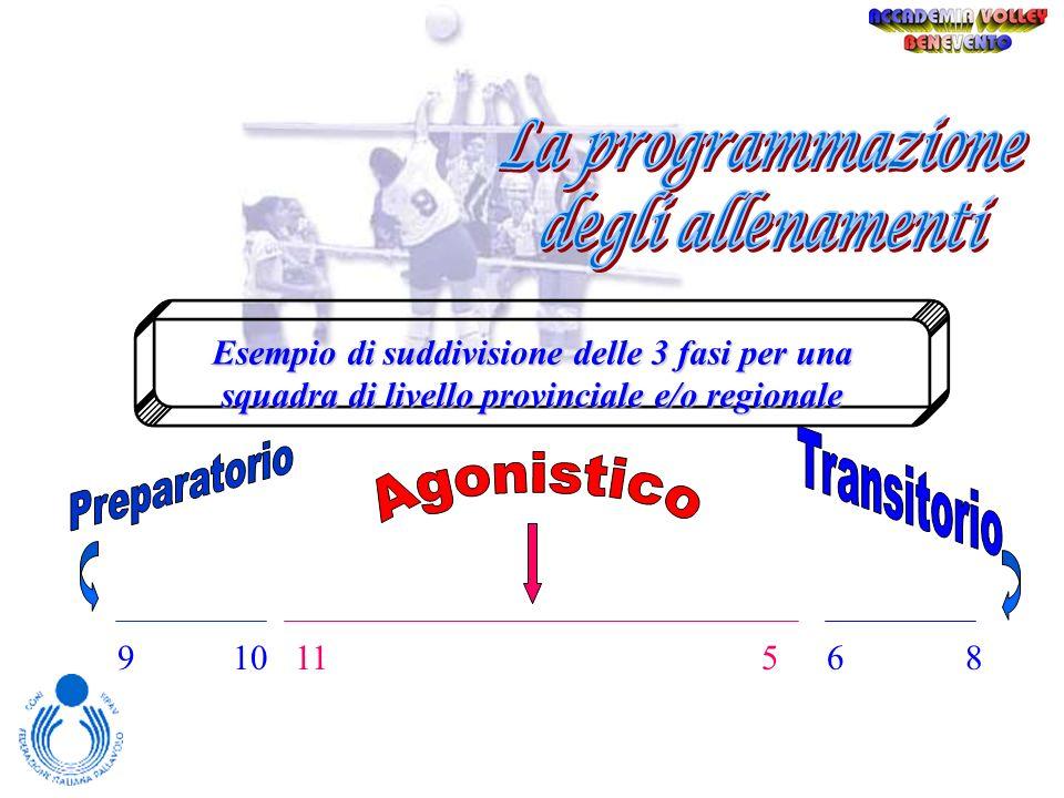 Nella programmazione degli allenamenti vengono individuate, di solito, 3 grandi fasi Tramite gli allenamenti andiamo alla ricerca della forma. Gli all
