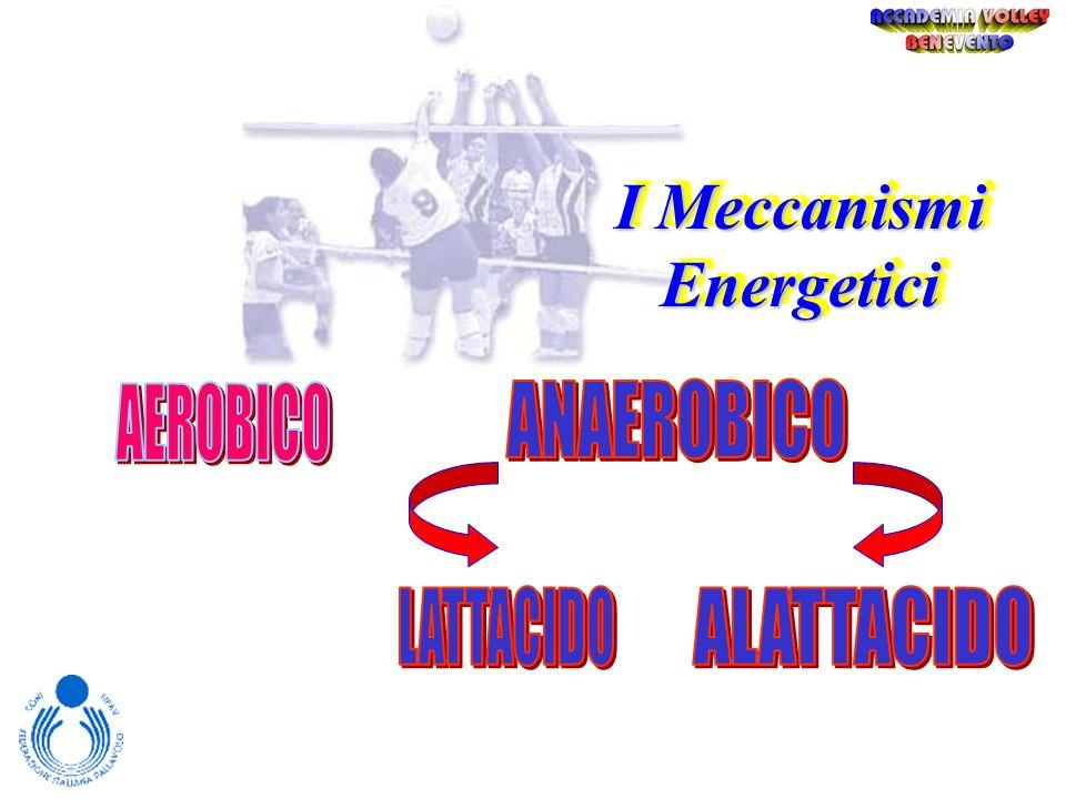 I Meccanismi Energetici I meccanismi energetici sono utilizzati a tale scopo e a seconda della quantità di potenza che lattività sportiva richiede (al