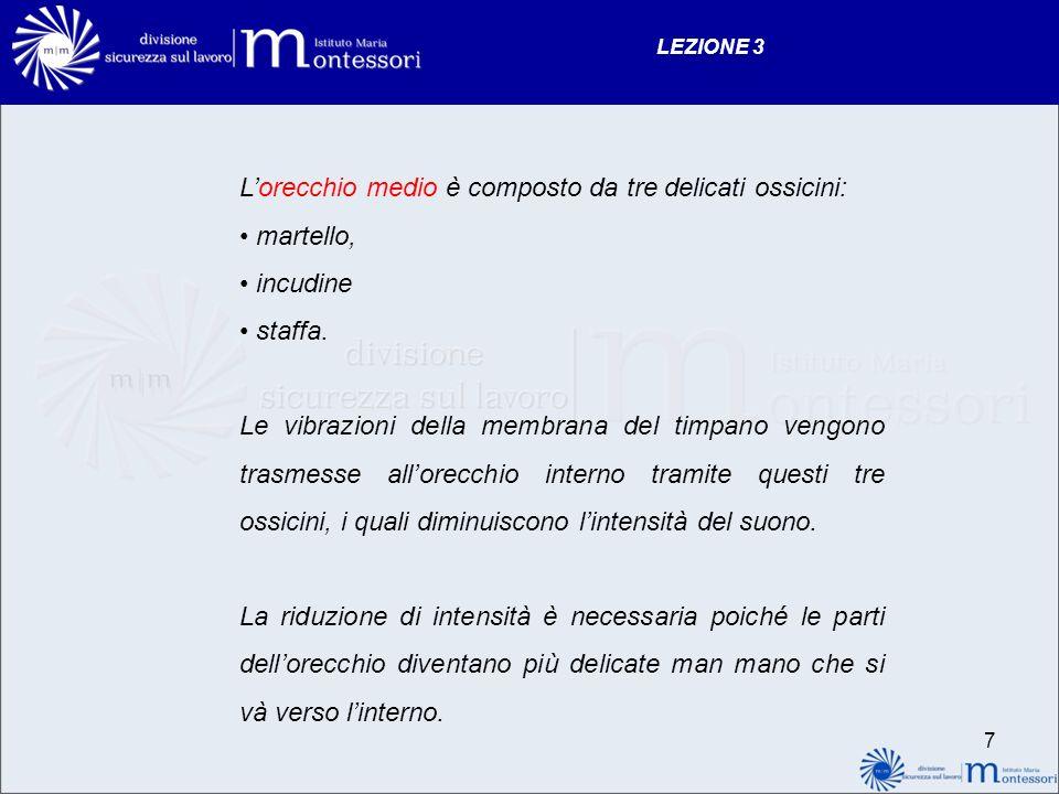 Lorecchio medio è composto da tre delicati ossicini: martello, incudine staffa.