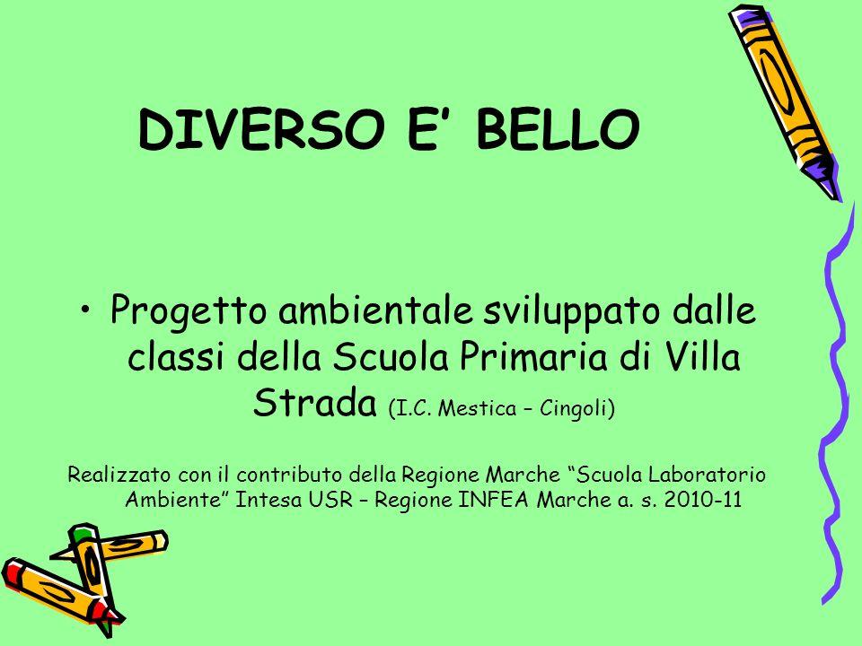 DIVERSO E BELLO Progetto ambientale sviluppato dalle classi della Scuola Primaria di Villa Strada (I.C. Mestica – Cingoli) Realizzato con il contribut