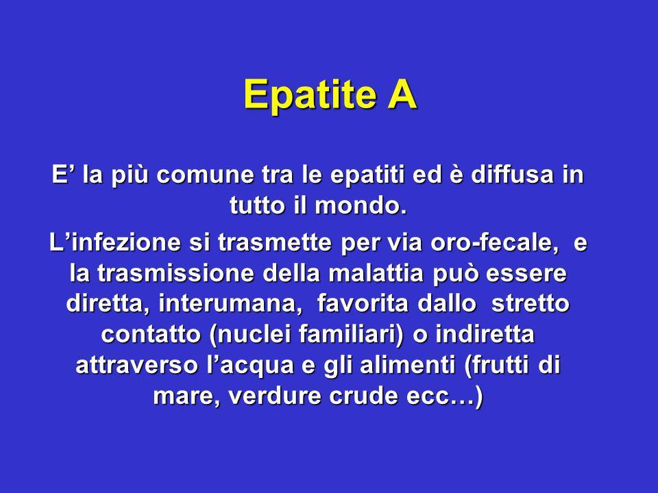 Epatite A E la più comune tra le epatiti ed è diffusa in tutto il mondo. Linfezione si trasmette per via oro-fecale, e la trasmissione della malattia