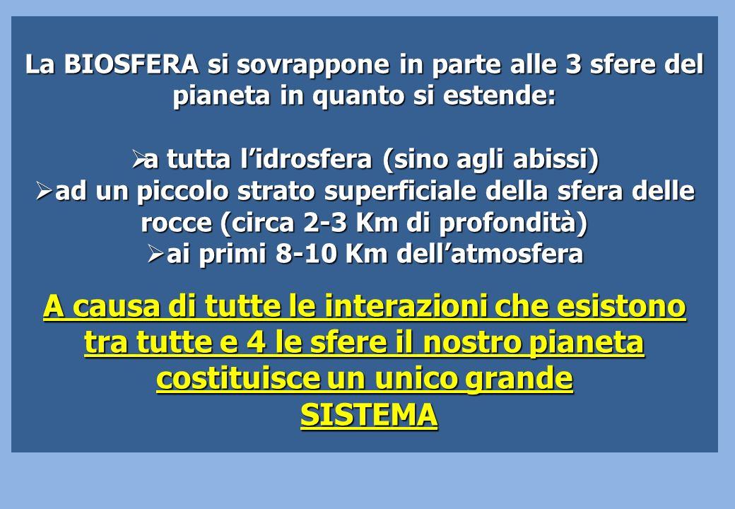 La BIOSFERA si sovrappone in parte alle 3 sfere del pianeta in quanto si estende: a tutta lidrosfera (sino agli abissi) a tutta lidrosfera (sino agli