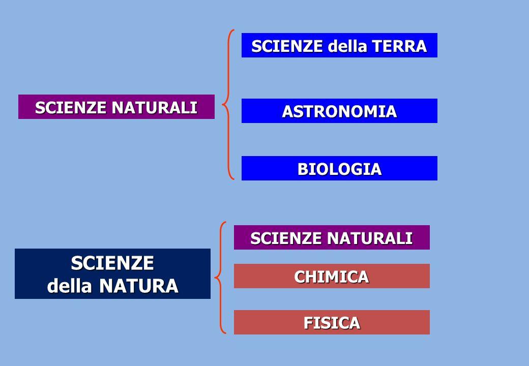 Le SCIENZE NATURALI formano la base di alcune delle cosiddette SCIENZE APPLICATE (es.