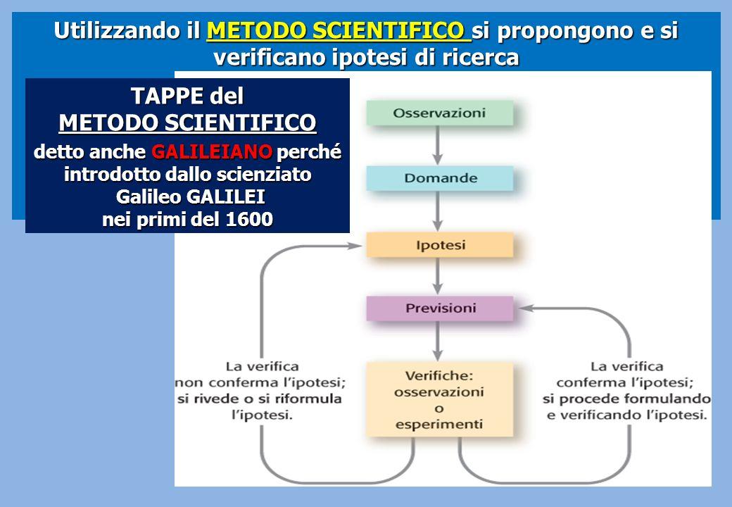 Utilizzando il METODO SCIENTIFICO si propongono e si verificano ipotesi di ricerca TAPPE del METODO SCIENTIFICO detto anche GALILEIANO perché introdot