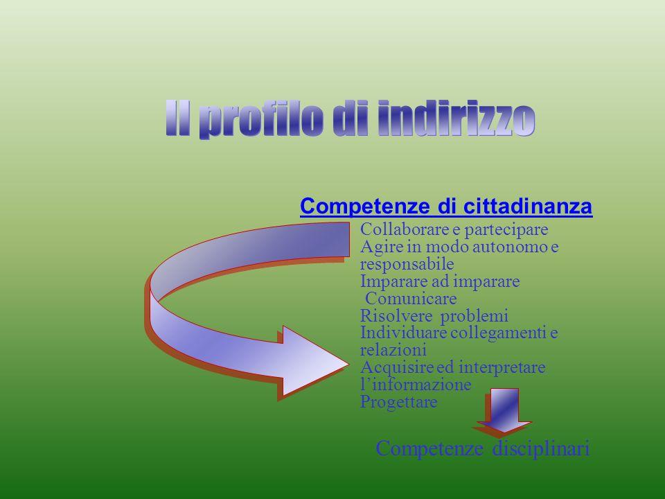 Competenze di cittadinanza Competenze disciplinari Collaborare e partecipare Agire in modo autonomo e responsabile Imparare ad imparare Comunicare Risolvere problemi Individuare collegamenti e relazioni Acquisire ed interpretare linformazione Progettare