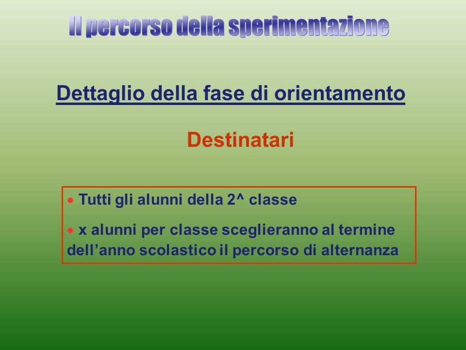 Dettaglio della fase di orientamento Tutti gli alunni della 2^ classe x alunni per classe sceglieranno al termine dellanno scolastico il percorso di alternanza Destinatari