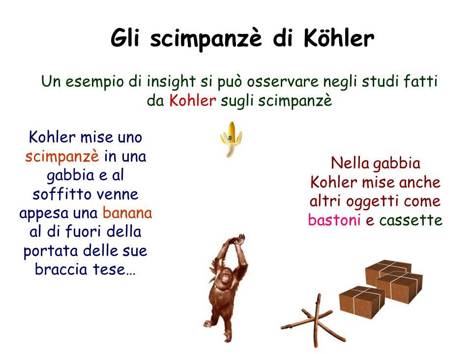 Gli scimpanzè di Köhler Un esempio di insight si può osservare negli studi fatti da Kohler sugli scimpanzè Kohler mise uno scimpanzè in una gabbia e a