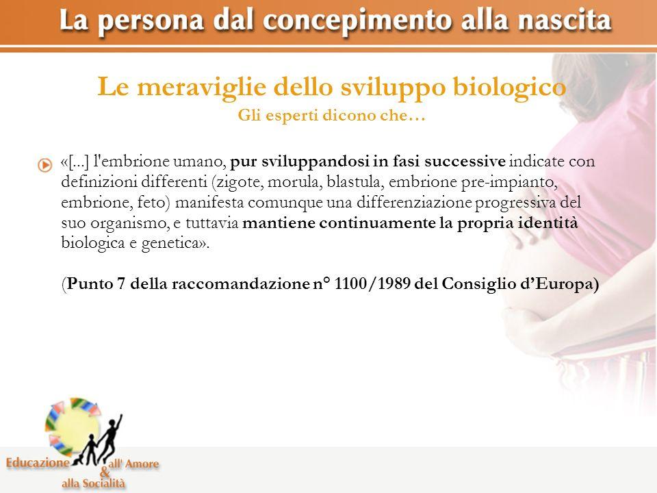Le meraviglie dello sviluppo biologico Gli esperti dicono che… «[...] l'embrione umano, pur sviluppandosi in fasi successive indicate con definizioni