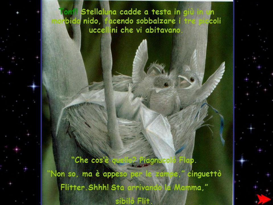 Tonf! Stellaluna cadde a testa in giù in un morbido nido, facendo sobbalzare i tre piccoli uccellini che vi abitavano. Che cosè quello? Piagnucolò Fla