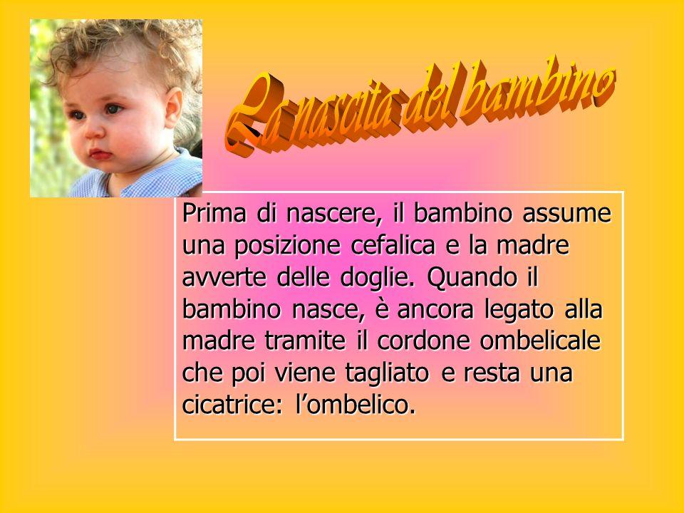 Prima di nascere, il bambino assume una posizione cefalica e la madre avverte delle doglie. Quando il bambino nasce, è ancora legato alla madre tramit