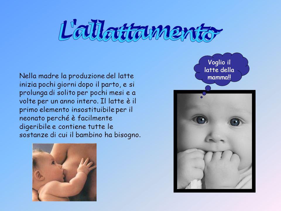 Voglio il latte della mamma!! Nella madre la produzione del latte inizia pochi giorni dopo il parto, e si prolunga di solito per pochi mesi e a volte