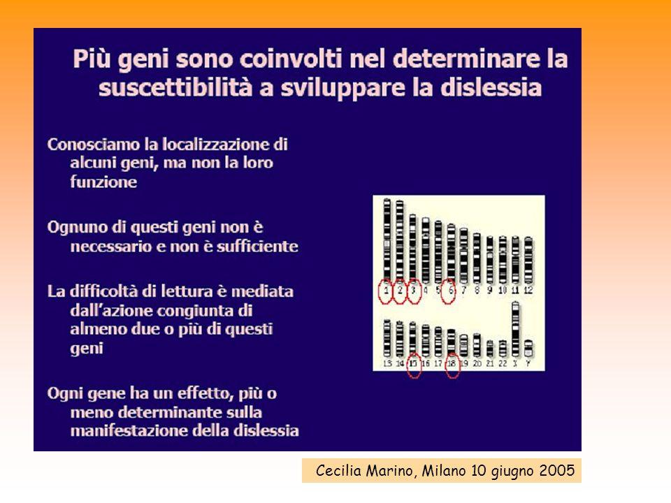 Cecilia Marino, Milano 10 giugno 2005