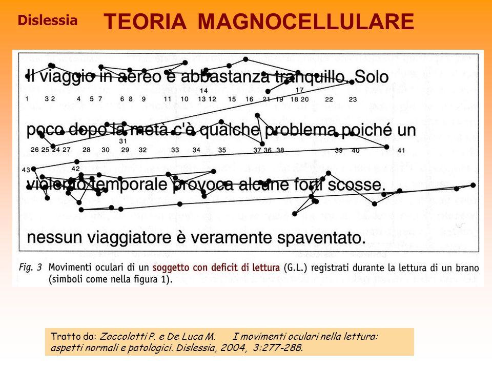 Dislessia TEORIA MAGNOCELLULARE Tratto da: Zoccolotti P. e De Luca M. I movimenti oculari nella lettura: aspetti normali e patologici. Dislessia, 2004