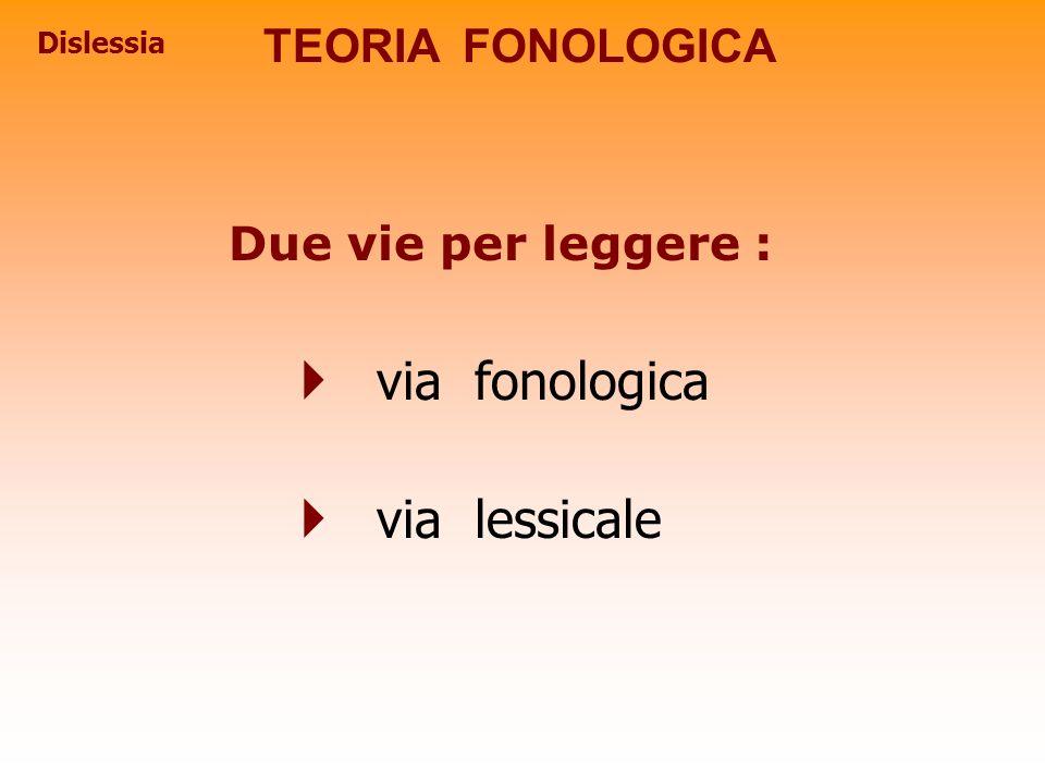 Dislessia TEORIA FONOLOGICA Due vie per leggere : via fonologica via lessicale