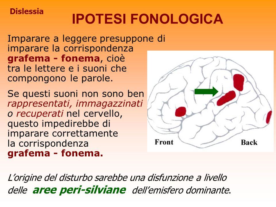 IPOTESI FONOLOGICA Imparare a leggere presuppone di imparare la corrispondenza grafema - fonema, cioè tra le lettere e i suoni che compongono le parol