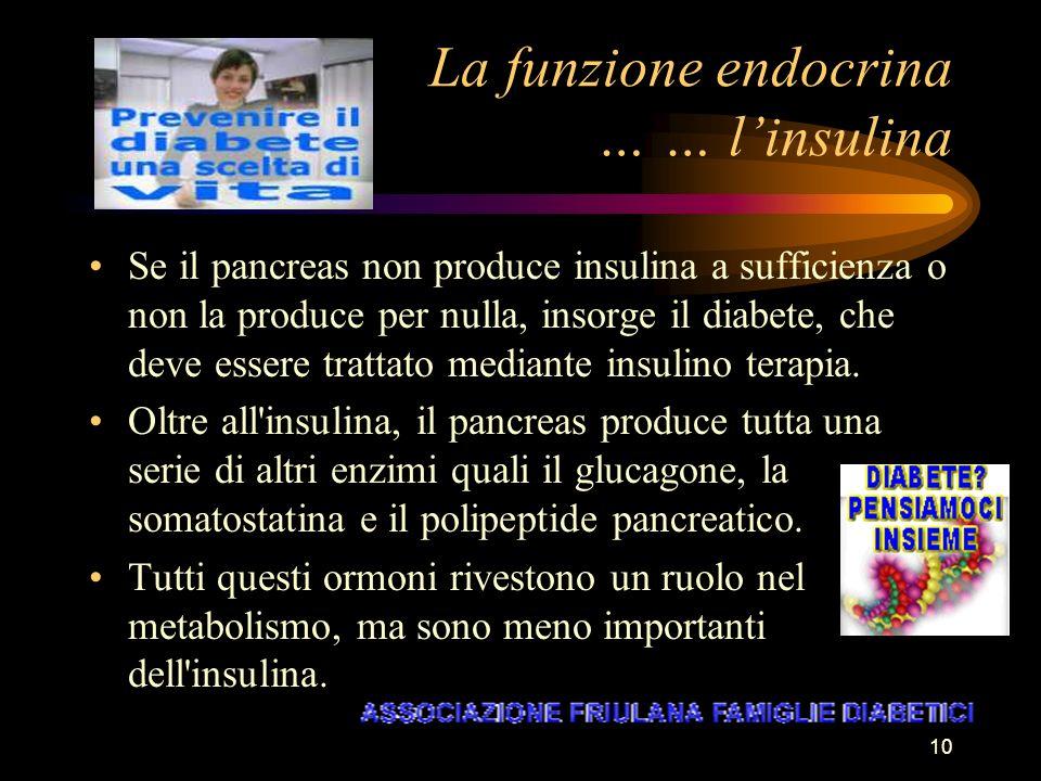 10 La funzione endocrina … … linsulina Se il pancreas non produce insulina a sufficienza o non la produce per nulla, insorge il diabete, che deve esse