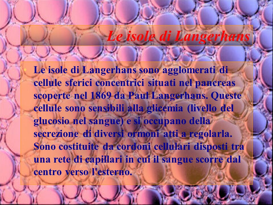11 Le isole di Langerhans Le isole di Langerhans sono agglomerati di cellule sferici concentrici situati nel pancreas scoperte nel 1869 da Paul Langer