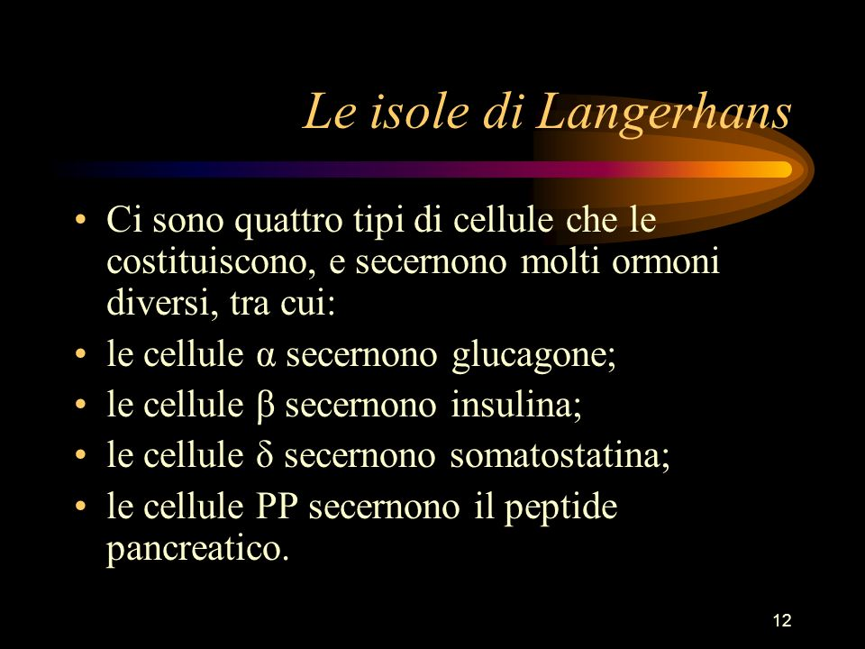 12 Le isole di Langerhans Ci sono quattro tipi di cellule che le costituiscono, e secernono molti ormoni diversi, tra cui: le cellule α secernono gluc