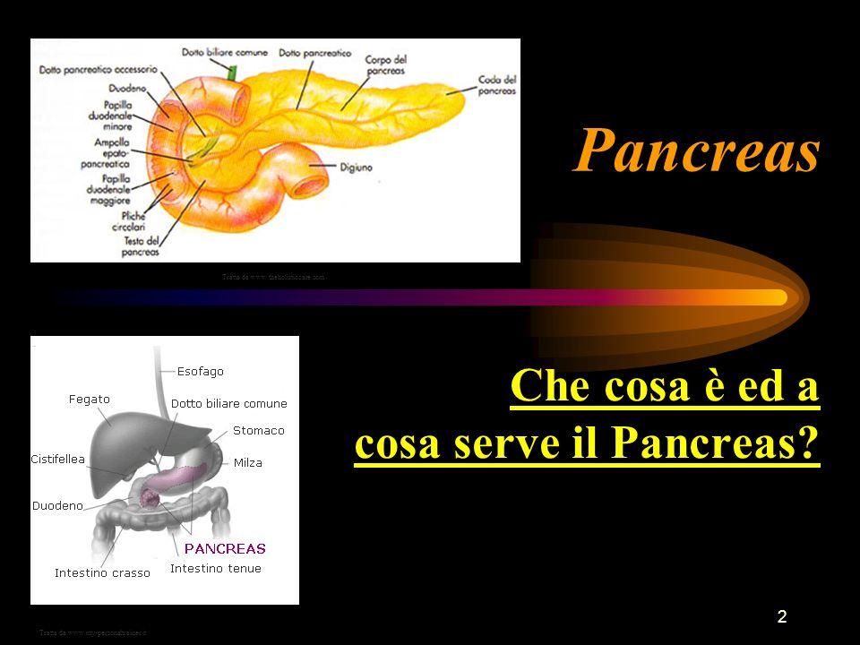 2 Pancreas Che cosa è ed a cosa serve il Pancreas? Tratta da www.my-personaltrainer.it Tratta da www.theholisticcare.com