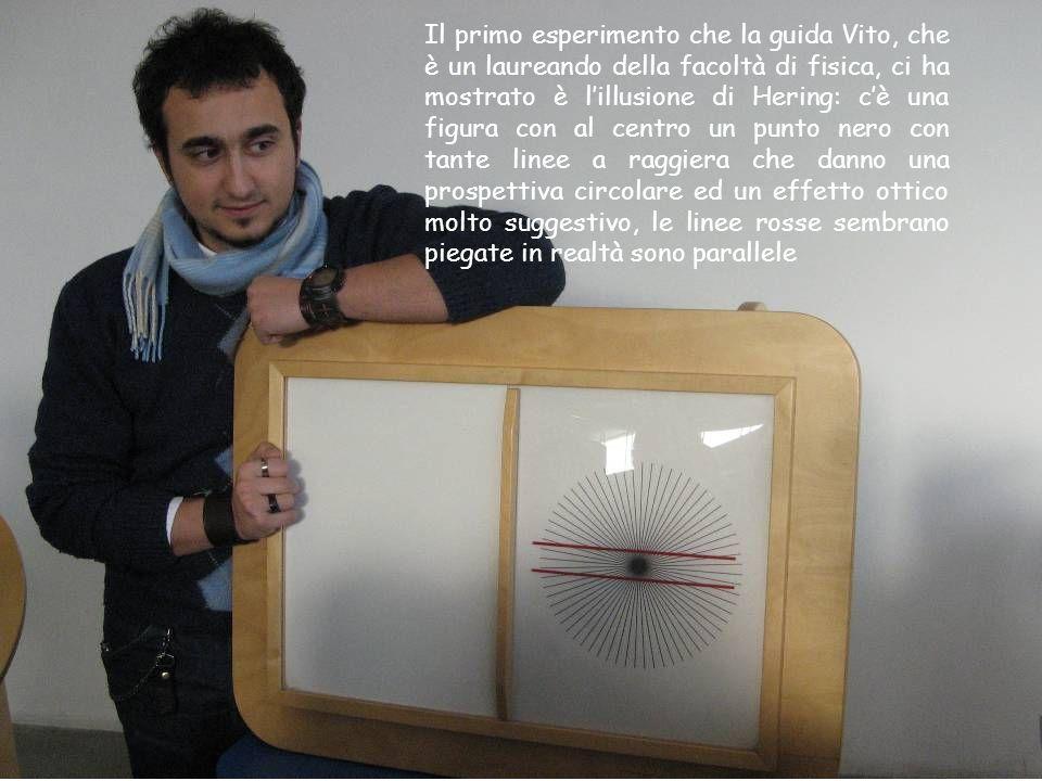 Il primo esperimento che la guida Vito, che è un laureando della facoltà di fisica, ci ha mostrato è lillusione di Hering: cè una figura con al centro
