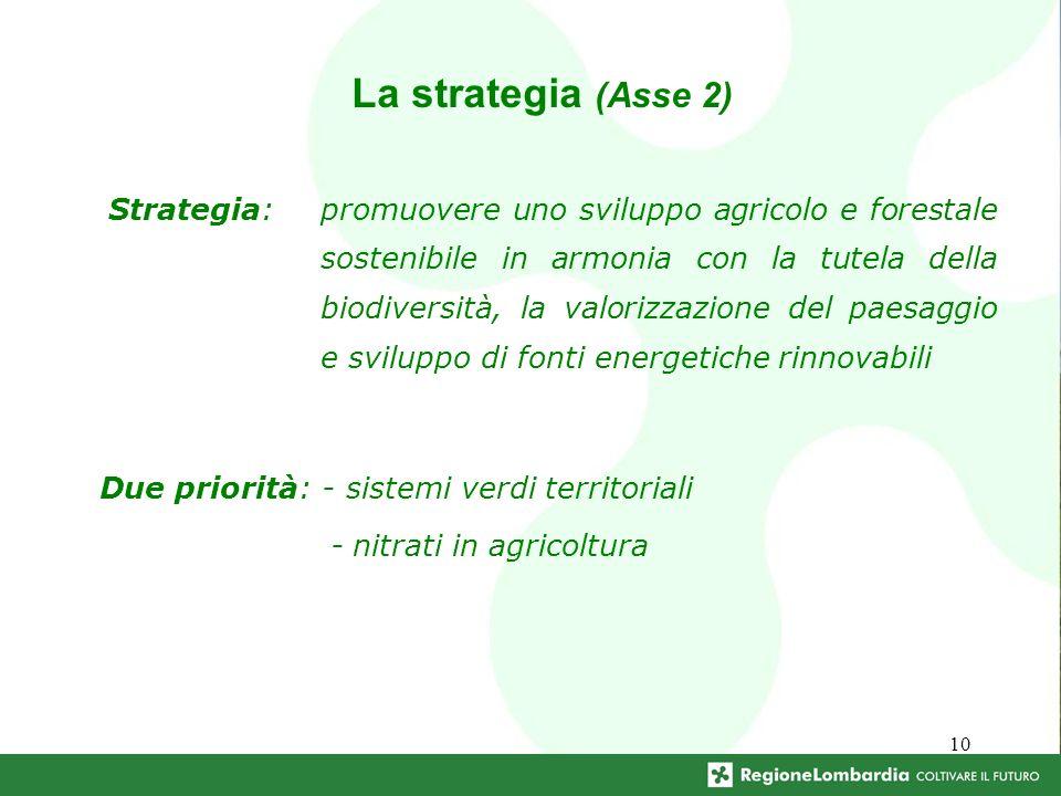 10 Due priorità: - sistemi verdi territoriali - nitrati in agricoltura La strategia (Asse 2) Strategia:promuovere uno sviluppo agricolo e forestale sostenibile in armonia con la tutela della biodiversità, la valorizzazione del paesaggio e sviluppo di fonti energetiche rinnovabili