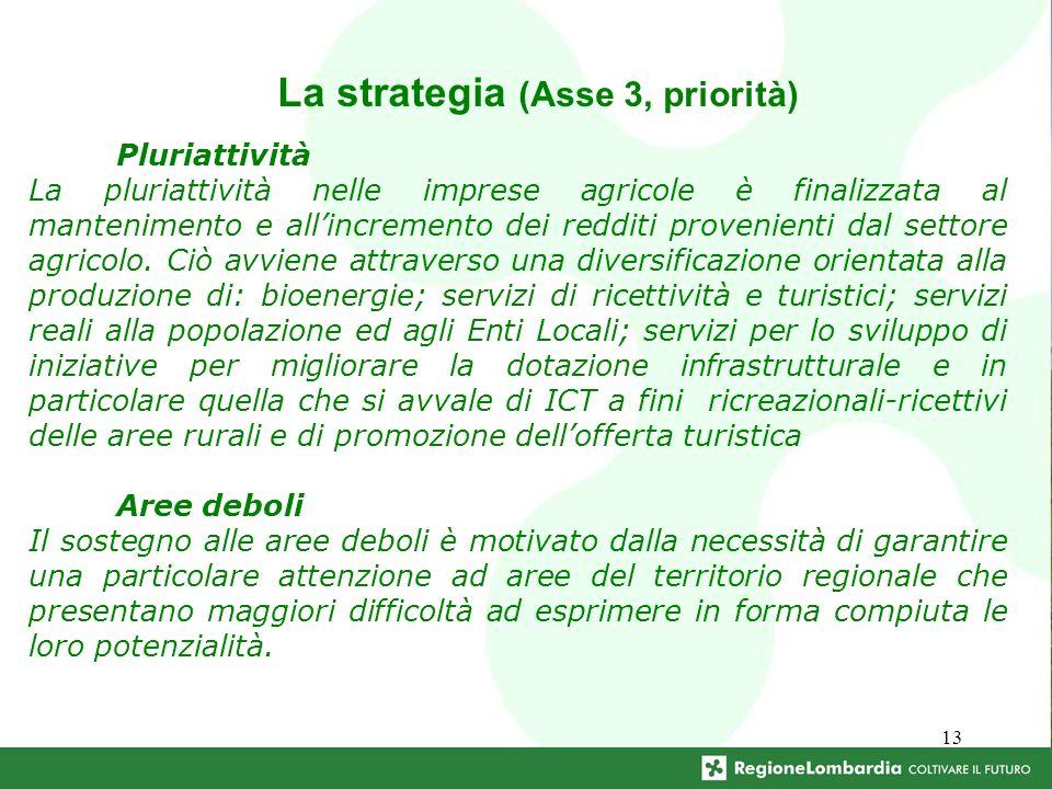 13 La strategia (Asse 3, priorità) Pluriattività La pluriattività nelle imprese agricole è finalizzata al mantenimento e allincremento dei redditi provenienti dal settore agricolo.