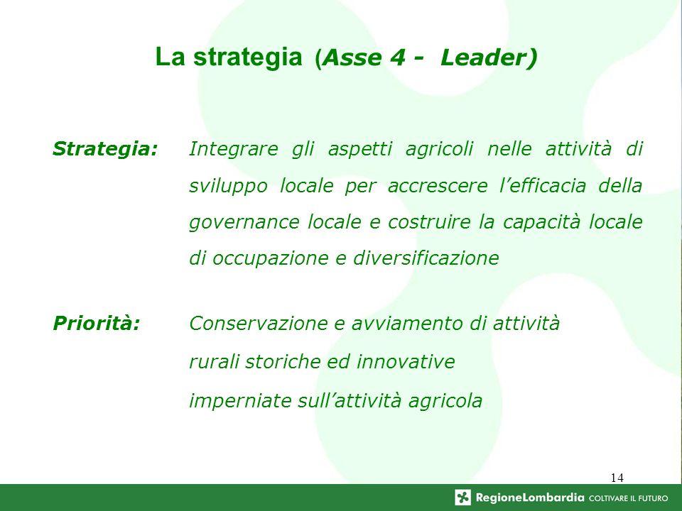 14 La strategia ( Asse 4 - Leader) Priorità:Conservazione e avviamento di attività rurali storiche ed innovative imperniate sullattività agricola Strategia:Integrare gli aspetti agricoli nelle attività di sviluppo locale per accrescere lefficacia della governance locale e costruire la capacità locale di occupazione e diversificazione