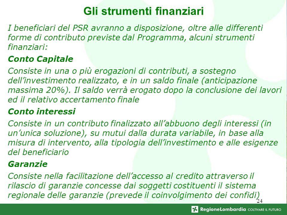24 Gli strumenti finanziari I beneficiari del PSR avranno a disposizione, oltre alle differenti forme di contributo previste dal Programma, alcuni str