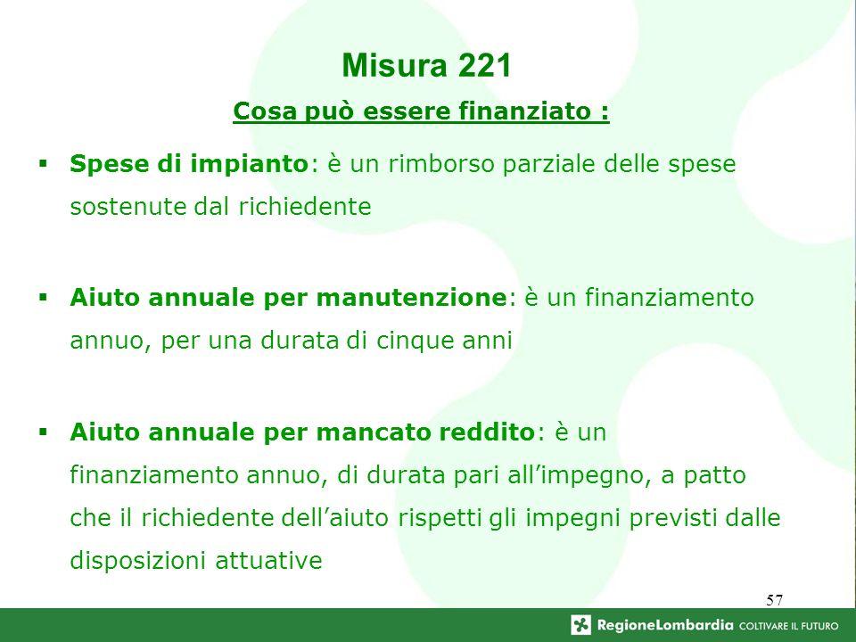 57 Cosa può essere finanziato : Spese di impianto: è un rimborso parziale delle spese sostenute dal richiedente Aiuto annuale per manutenzione: è un f