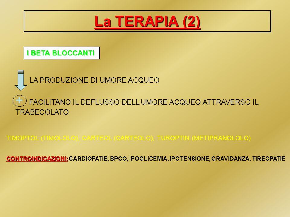 La TERAPIA (3) - ANIDRASI CARBONICA LA PRODUZIONE DI UMORE ACQUEO TRUSOPT PER USO TOPICO: TRUSOPT ( DORZOLAMIDE) FENAMIDE,GLAUMID,ANTIDRASI (DICLOROFENAMIDE) PER USO SISTEMICO: FENAMIDE,GLAUMID,ANTIDRASI (DICLOROFENAMIDE) β bloccanti (COSOPT) POSSIBILITA DI ASSOCIAZIONE con i β bloccanti (COSOPT) CONTROINDICAZIONI: CONTROINDICAZIONI: COMPROMISSIONE FUNZIONALITA RENALE