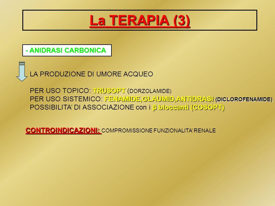 La TERAPIA (4) ANALOGHI DELLE PROSTAGLANDINE FACILITANO IL DEFLUSSO UVEO-SCLERALE XALATANTRAVATAN LUMIGAN XALATAN ( LATANOPROST), TRAVATAN (TRAVOPROST), LUMIGAN (BIMATOPROST) IN FASCIA A CON NOTA 78 MONOTERAPIAIN ASSOCIAZIONE IN MONOTERAPIA O IN ASSOCIAZIONE AVVERTENZE:IPEREMIA CONGIUNTIVALE AVVERTENZE: possono causare IPEREMIA CONGIUNTIVALE (allinizio) DISCROMIA DELLIRIDE DISCROMIA DELLIRIDE (iride a pigment.