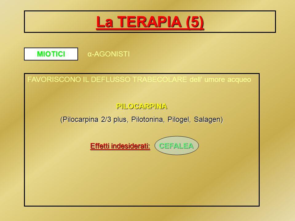 La TERAPIA (6) α 2 AGONISTI FAVORISCONO IL DEFLUSSO TRABECOLARE dell umore acqueo POSSIBILITA DI ASSOCIAZIONE con gli altri farmaci antiglaucoma BRIMONIDINA TARTRATO (Alphagan) BEN TOLLERATO