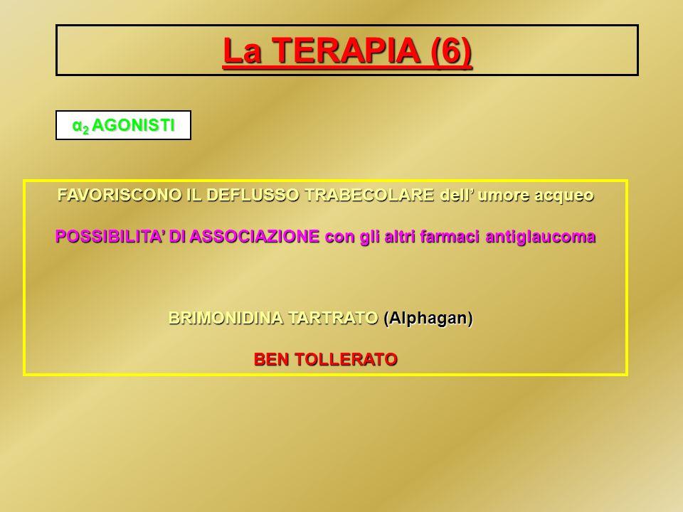 La TERAPIA (6) α 2 AGONISTI FAVORISCONO IL DEFLUSSO TRABECOLARE dell umore acqueo POSSIBILITA DI ASSOCIAZIONE con gli altri farmaci antiglaucoma BRIMO