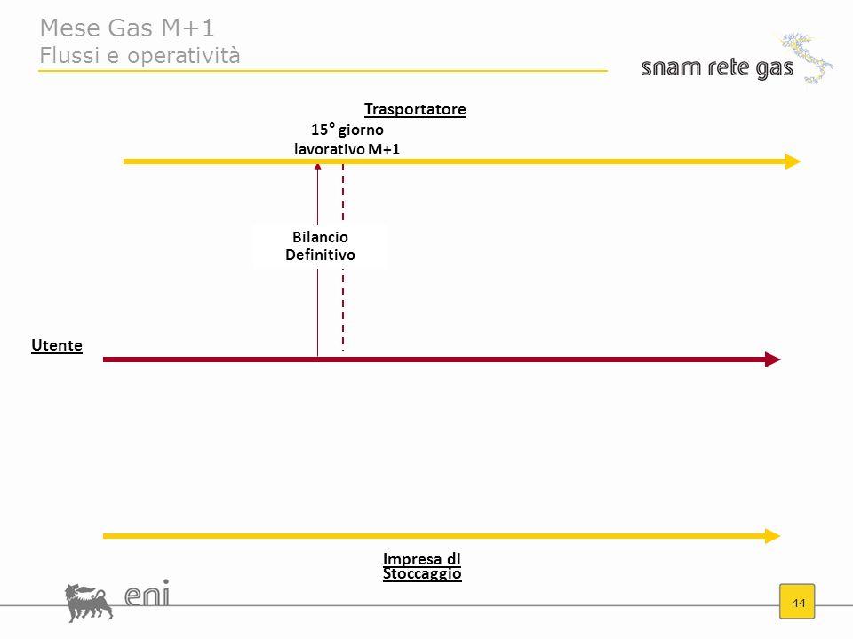 44 Mese Gas M+1 Flussi e operatività Trasportatore Impresa di Stoccaggio 15° giorno lavorativo M+1 Bilancio Definitivo Utente