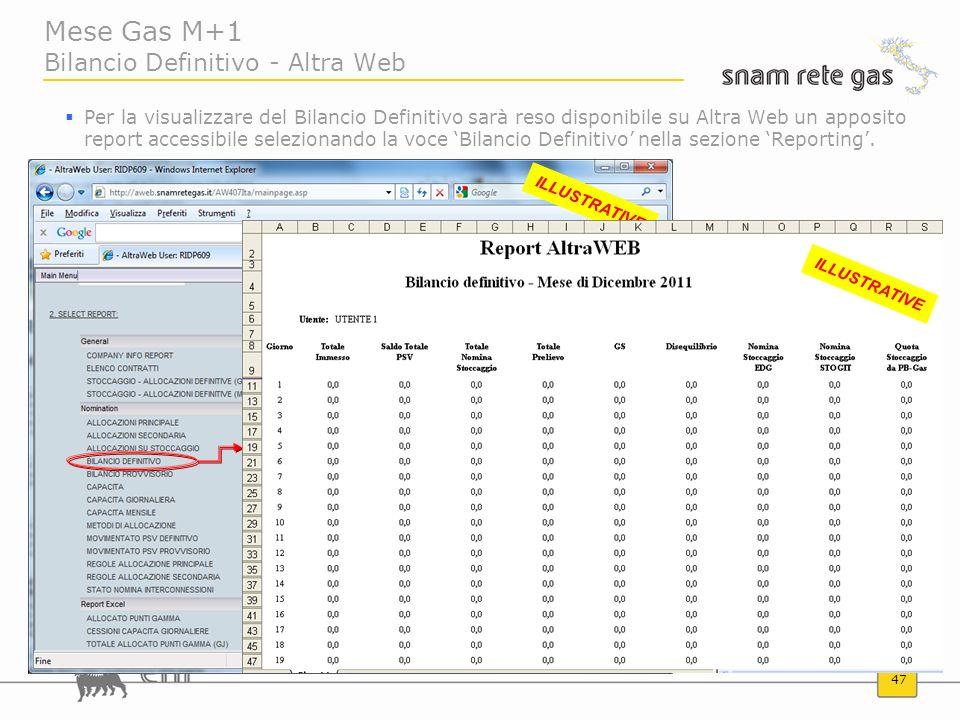 47 Mese Gas M+1 Bilancio Definitivo - Altra Web Per la visualizzare del Bilancio Definitivo sarà reso disponibile su Altra Web un apposito report acce