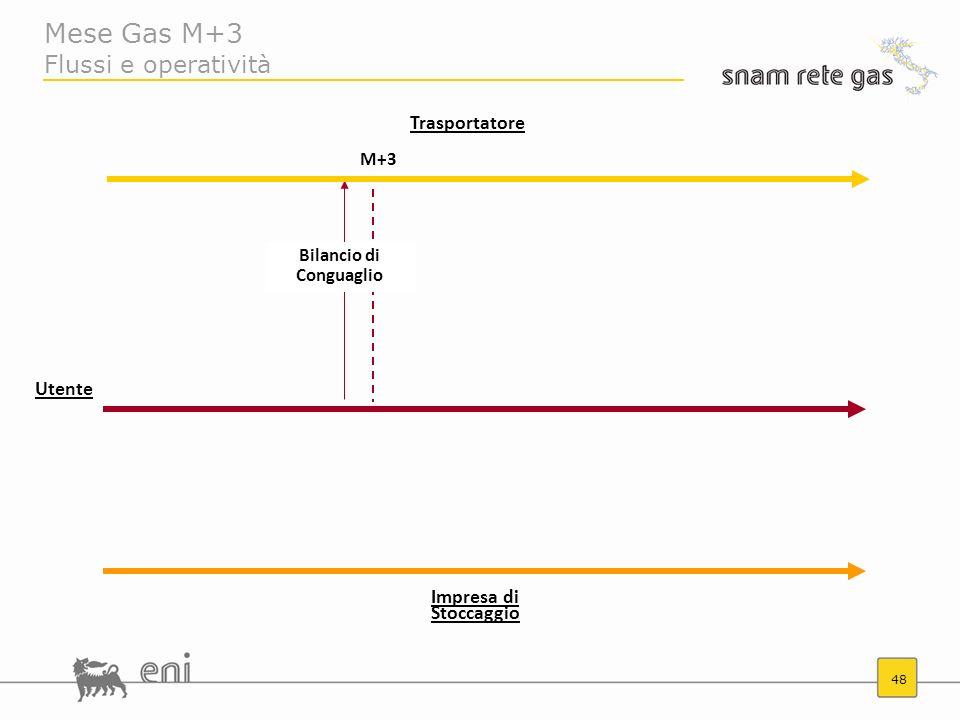 48 Mese Gas M+3 Flussi e operatività Trasportatore M+3 Bilancio di Conguaglio Utente Impresa di Stoccaggio