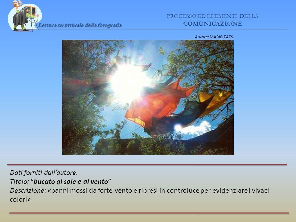Lettura strutturale della fotografia PROCESSO ED ELEMENTI DELLA COMUNICAZIONE Dati forniti dallautore. Titolo: bucato al sole e al vento Descrizione:
