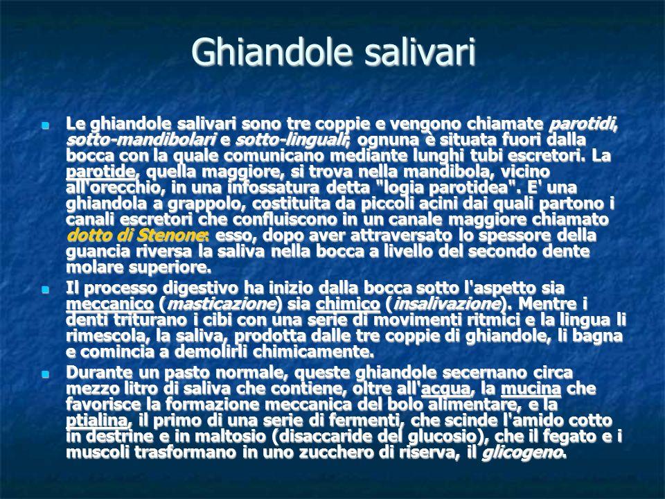 Ghiandole salivari Le ghiandole salivari sono tre coppie e vengono chiamate parotidi, sotto-mandibolari e sotto-linguali; ognuna è situata fuori dalla