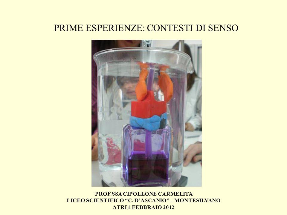 PROF.SSA CIPOLLONE CARMELITA LICEO SCIENTIFICO C. DASCANIO – MONTESILVANO ATRI 1 FEBBRAIO 2012 PRIME ESPERIENZE: CONTESTI DI SENSO