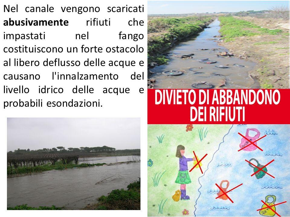 Nel canale vengono scaricati abusivamente rifiuti che impastati nel fango costituiscono un forte ostacolo al libero deflusso delle acque e causano l'i